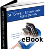 How to Survive the Economic Meltdown