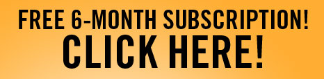 free-6-month-subscription